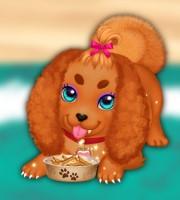 Cute Puppy Care 3
