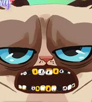 Grumpy Cat Dental Care