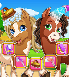 Horse Makeover Hair Salon 2